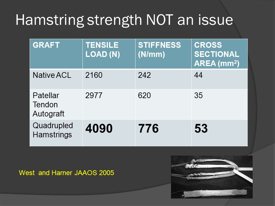 Hamstring strength NOT an issue GRAFTTENSILE LOAD (N) STIFFNESS (N/mm) CROSS SECTIONAL AREA (mm 2 ) Native ACL216024244 Patellar Tendon Autograft 2977