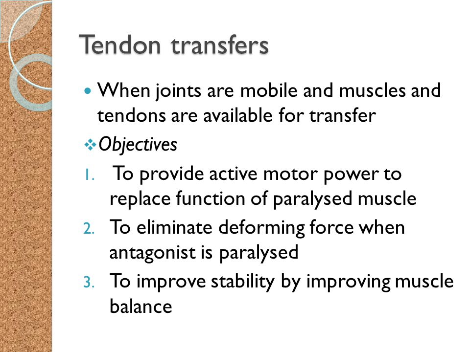 Tendon transfers When joints are mobile and muscles and tendons are available for transfer  Objectives 1. To provide active motor power to replace fu