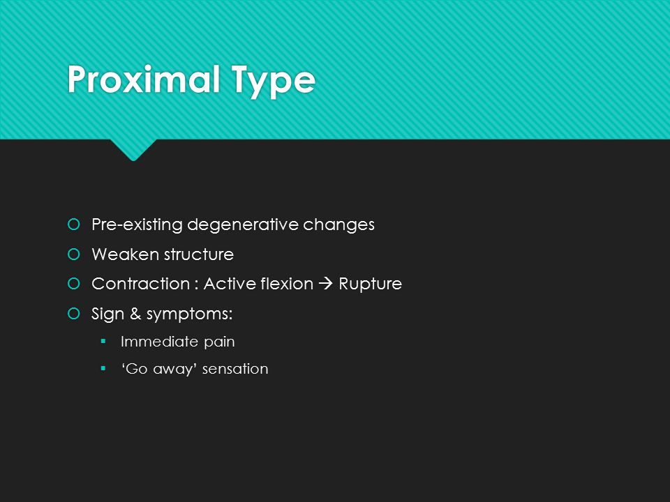 Proximal Type  Pre-existing degenerative changes  Weaken structure  Contraction : Active flexion  Rupture  Sign & symptoms:  Immediate pain  'Go away' sensation  Pre-existing degenerative changes  Weaken structure  Contraction : Active flexion  Rupture  Sign & symptoms:  Immediate pain  'Go away' sensation