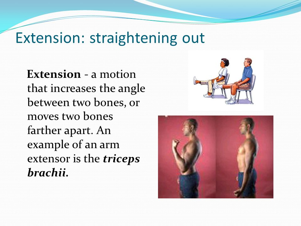 Extension: straightening out Extension - a motion that increases the angle between two bones, or moves two bones farther apart.