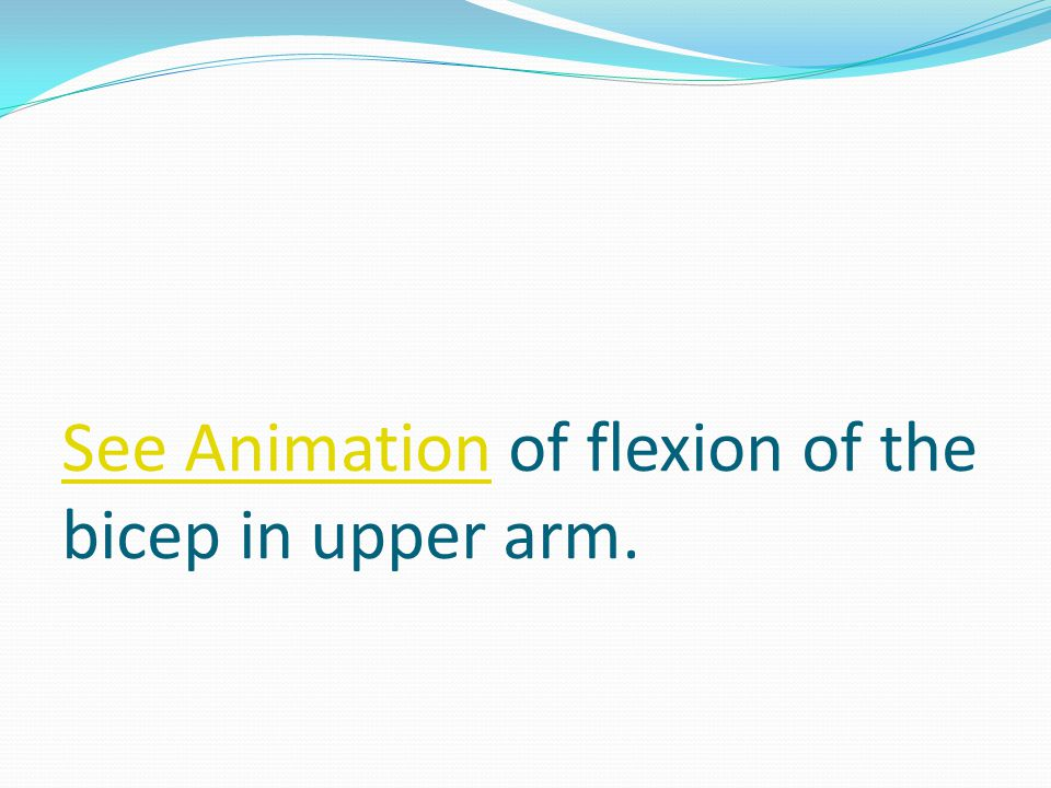 See AnimationSee Animation of flexion of the bicep in upper arm.