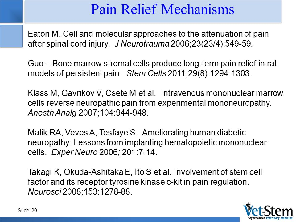 Slide 20 Eaton M. Cell and molecular approaches to the attenuation of pain after spinal cord injury. J Neurotrauma 2006;23(23/4):549-59. Guo – Bone ma