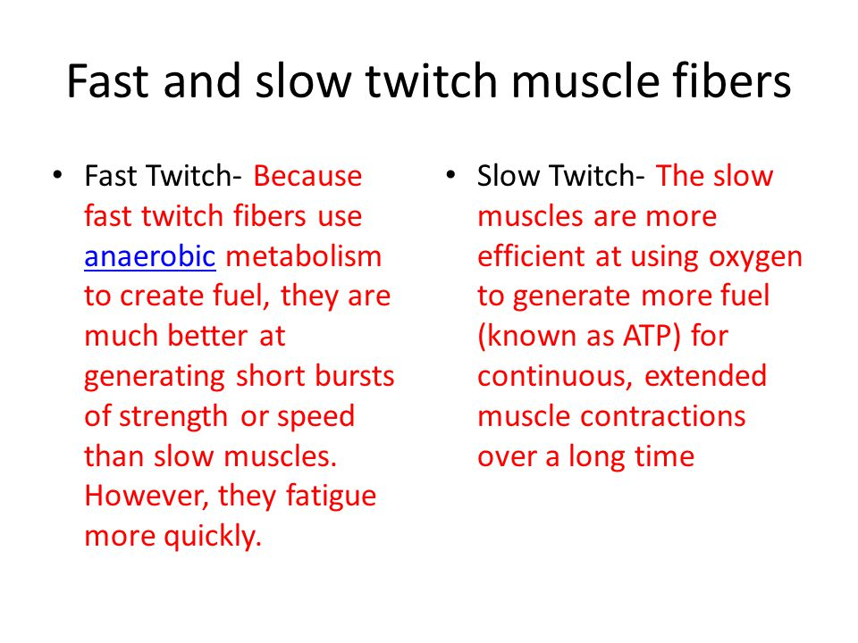 Fast and slow twitch muscle fibers Fast Twitch- Because fast twitch fibers use anaerobic metabolism to create fuel, they are much better at generating short bursts of strength or speed than slow muscles.
