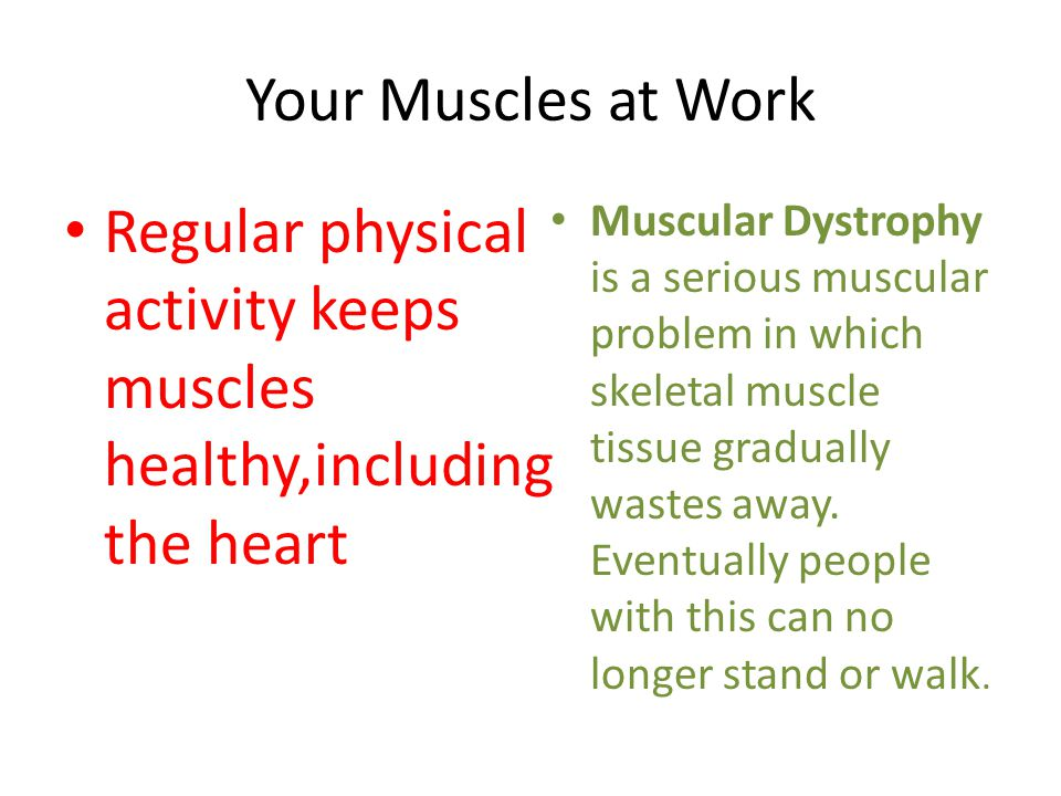 Your Muscles at Work Regular physical activity keeps muscles healthy,including the heart Muscular Dystrophy is a serious muscular problem in which skeletal muscle tissue gradually wastes away.