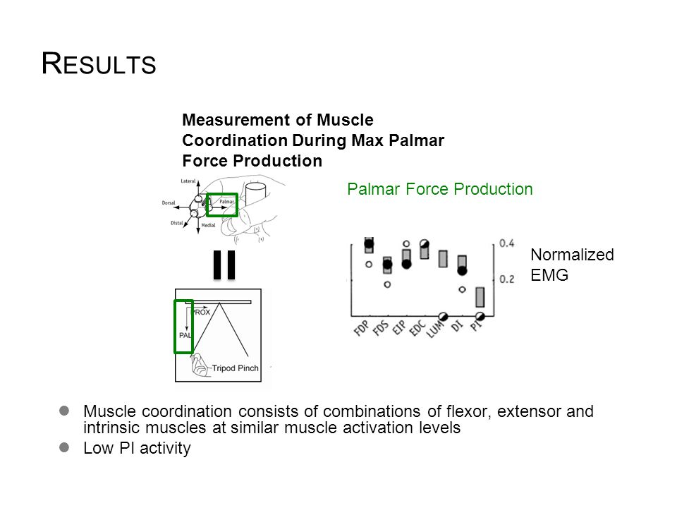R ESULTS Measurement of Muscle Coordination During Max Palmar Force Production Valero-Cuevas et al. 1998 Muscle coordination consists of combinations