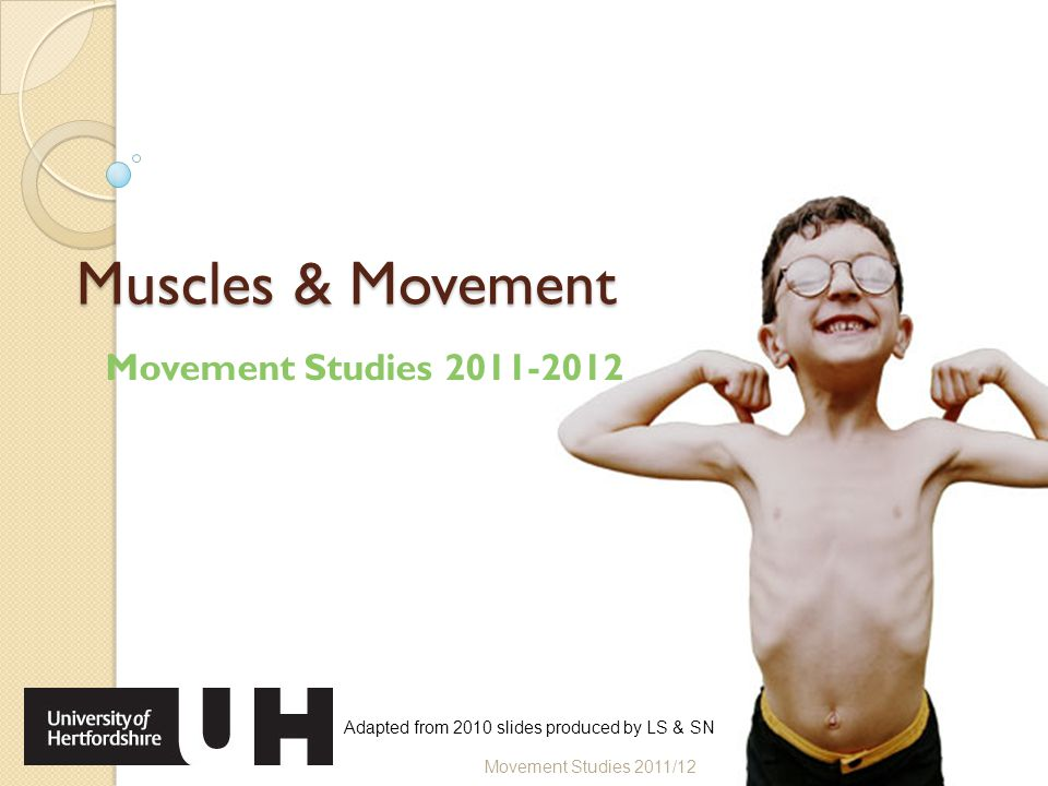 Muscles & Movement Movement Studies 2011-2012 Movement Studies 2011/12 Adapted from 2010 slides produced by LS & SN