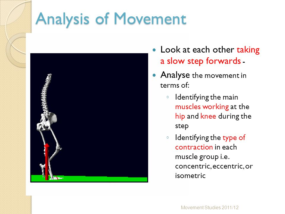 Analysis of Movement Movement Studies 2011/12 Look at each other taking a slow step forwards - Analyse the movement in terms of: ◦ Identifying the mai