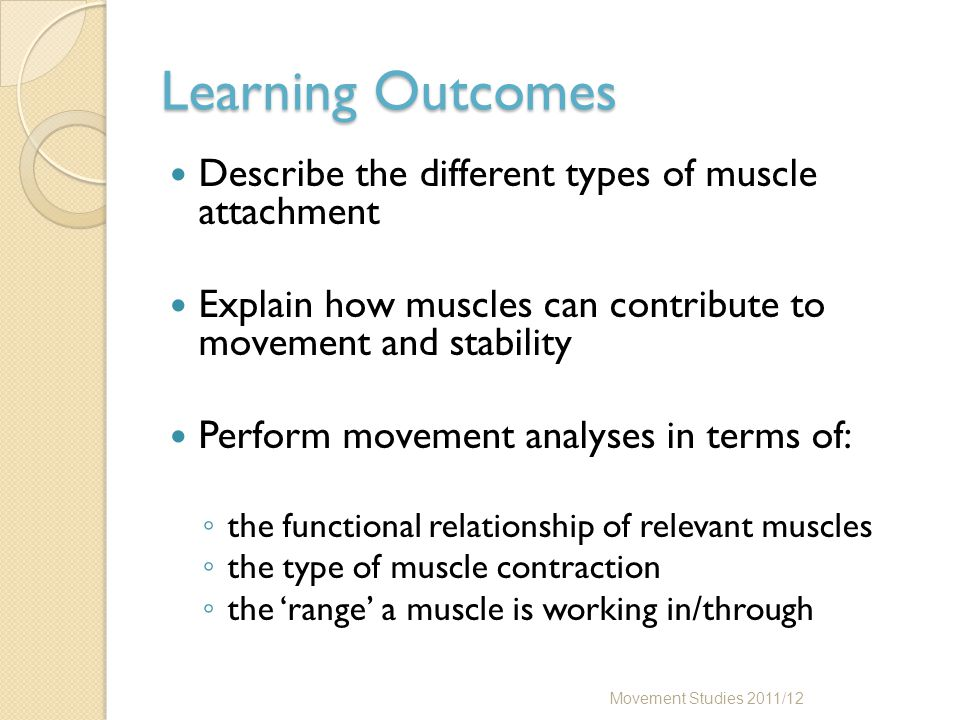Conclusion Make sure you are happy that the learning outcomes have been met Familiarise yourself with the main muscles of the hip and knee and how their attachments vary – relate this to their function Use your bones to determine where the muscles attach Movement Studies 2011/12