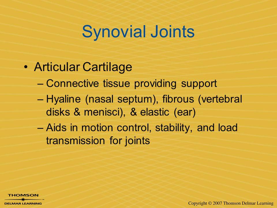 Synovial Joints Articular Cartilage –Connective tissue providing support –Hyaline (nasal septum), fibrous (vertebral disks & menisci), & elastic (ear)