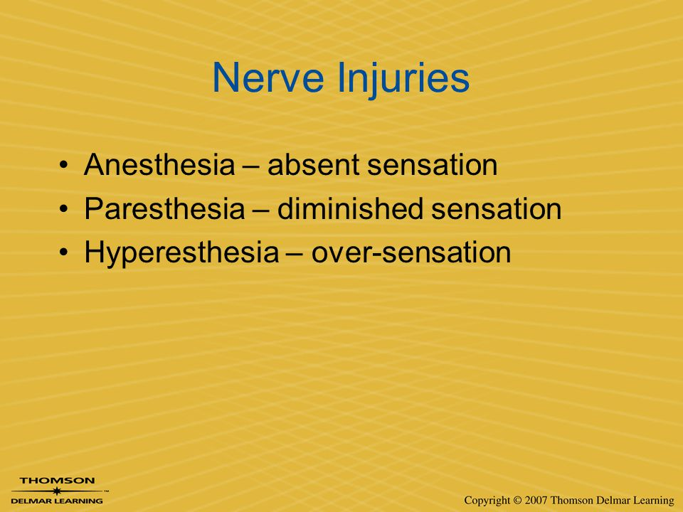 Nerve Injuries Anesthesia – absent sensation Paresthesia – diminished sensation Hyperesthesia – over-sensation