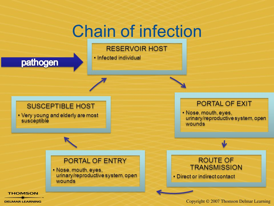 Chain of infection RESERVOIR HOST Infected individual PORTAL OF EXIT Nose, mouth, eyes, urinary/reproductive system, open wounds ROUTE OF TRANSMISSION