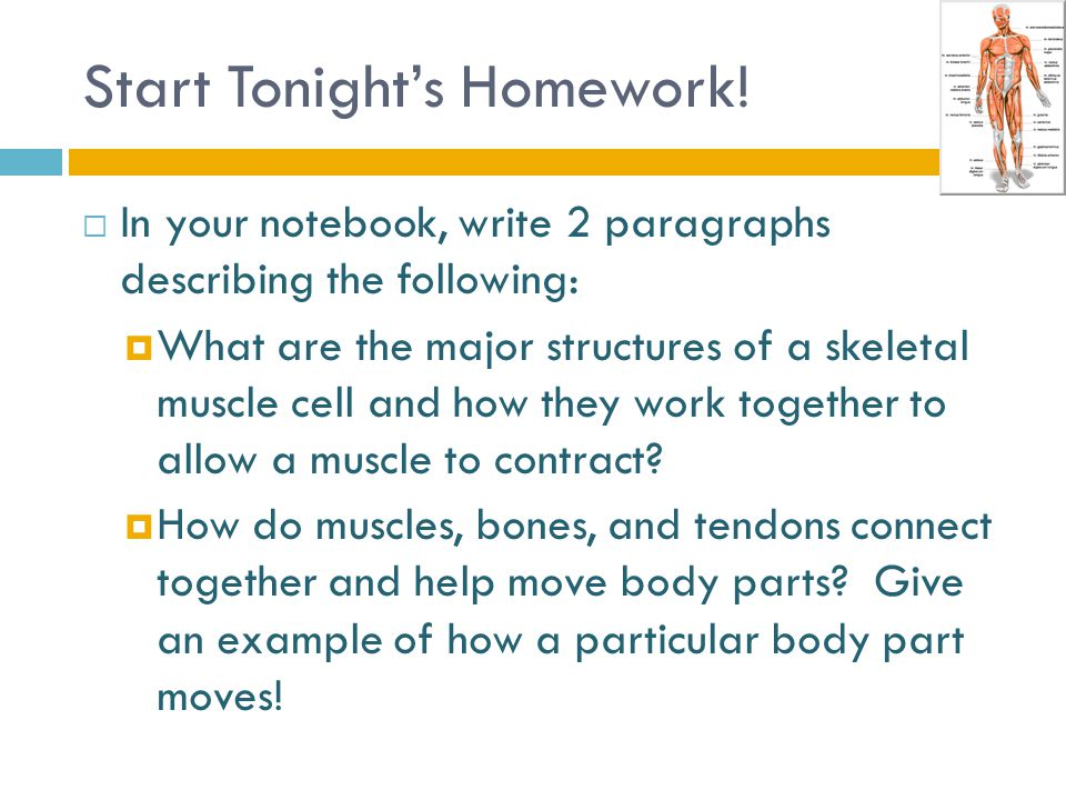 Start Tonight's Homework.