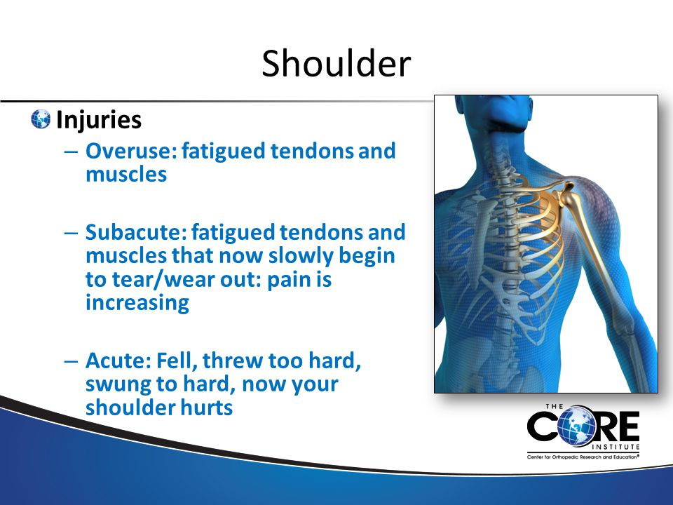 Shoulder Injuries – Overuse: fatigued tendons and muscles – Subacute: fatigued tendons and muscles that now slowly begin to tear/wear out: pain is increasing – Acute: Fell, threw too hard, swung to hard, now your shoulder hurts