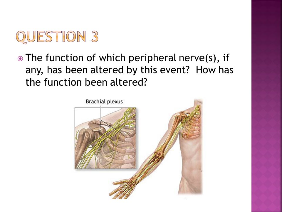 Nerves Involved:  Suprascapular  Supraspinatus and infraspinatus  Where does the suprascapular n.