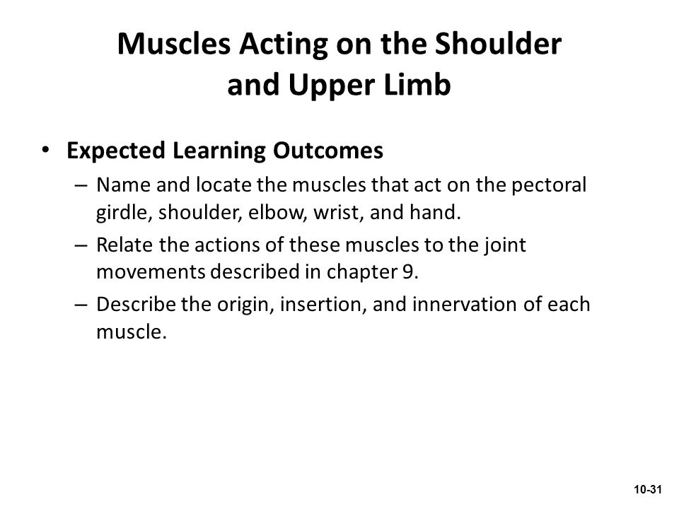 Muscles Acting on the Shoulder and Upper Limb Expected Learning Outcomes – Name and locate the muscles that act on the pectoral girdle, shoulder, elbo
