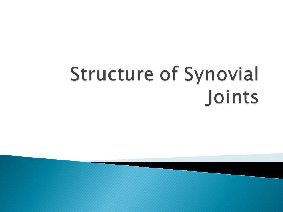 Synovial Joint  Allows wide ROM with strength and stability  ROM determined by ◦ Bone structure ◦ Strength of ligaments and capsule ◦ Size, arrangement, and action of muscles