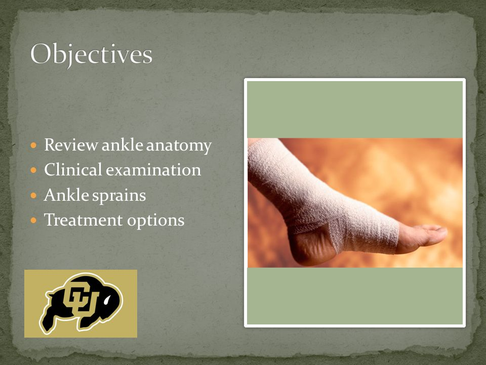 Review ankle anatomy Clinical examination Ankle sprains Treatment options