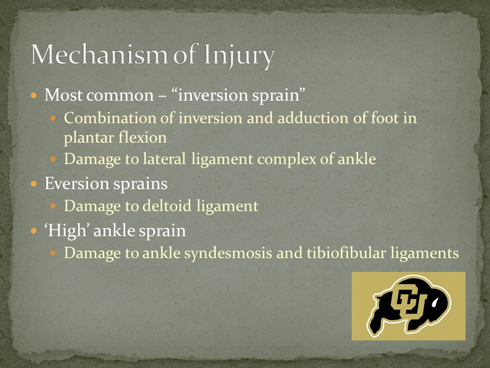 "Most common – ""inversion sprain"" Combination of inversion and adduction of foot in plantar flexion Damage to lateral ligament complex of ankle Eversio"