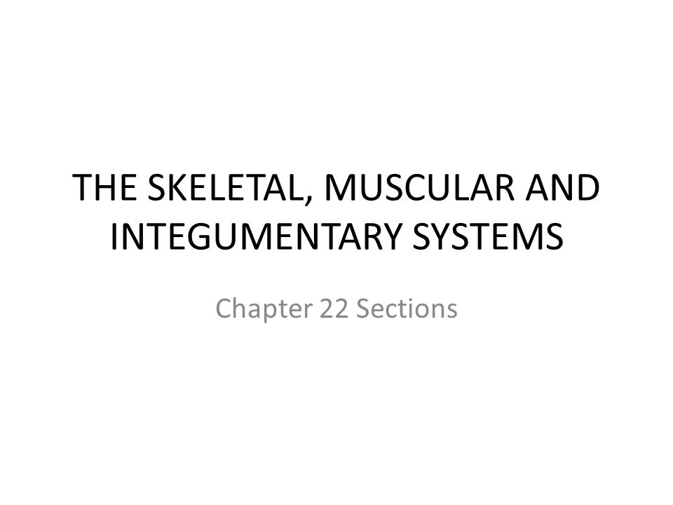 THE SKELETAL, MUSCULAR AND INTEGUMENTARY SYSTEMS Chapter 22 Sections