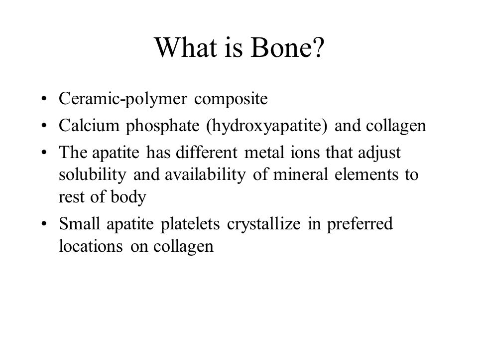 What is Bone.