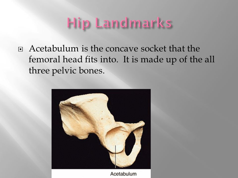  Acetabulum is the concave socket that the femoral head fits into.