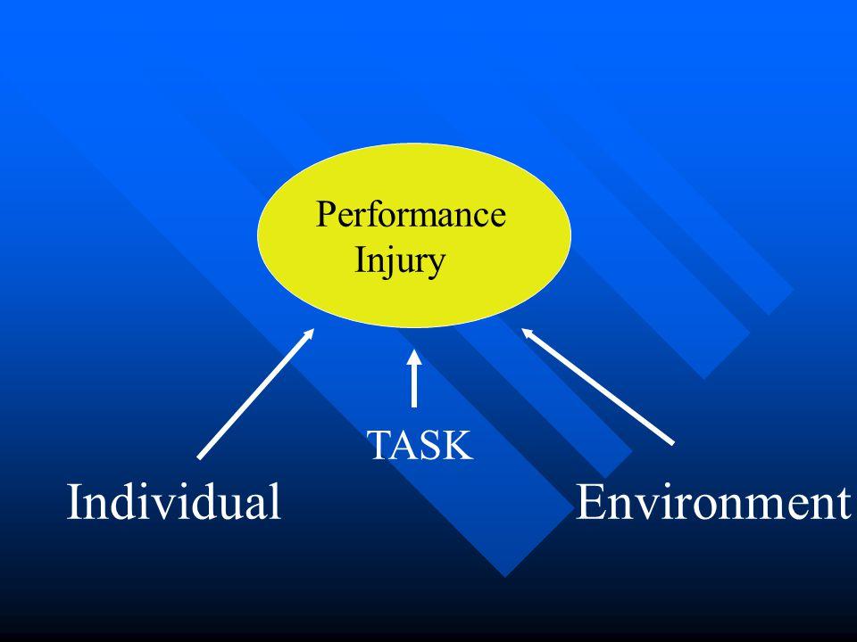 TASK Performance Injury EnvironmentIndividual