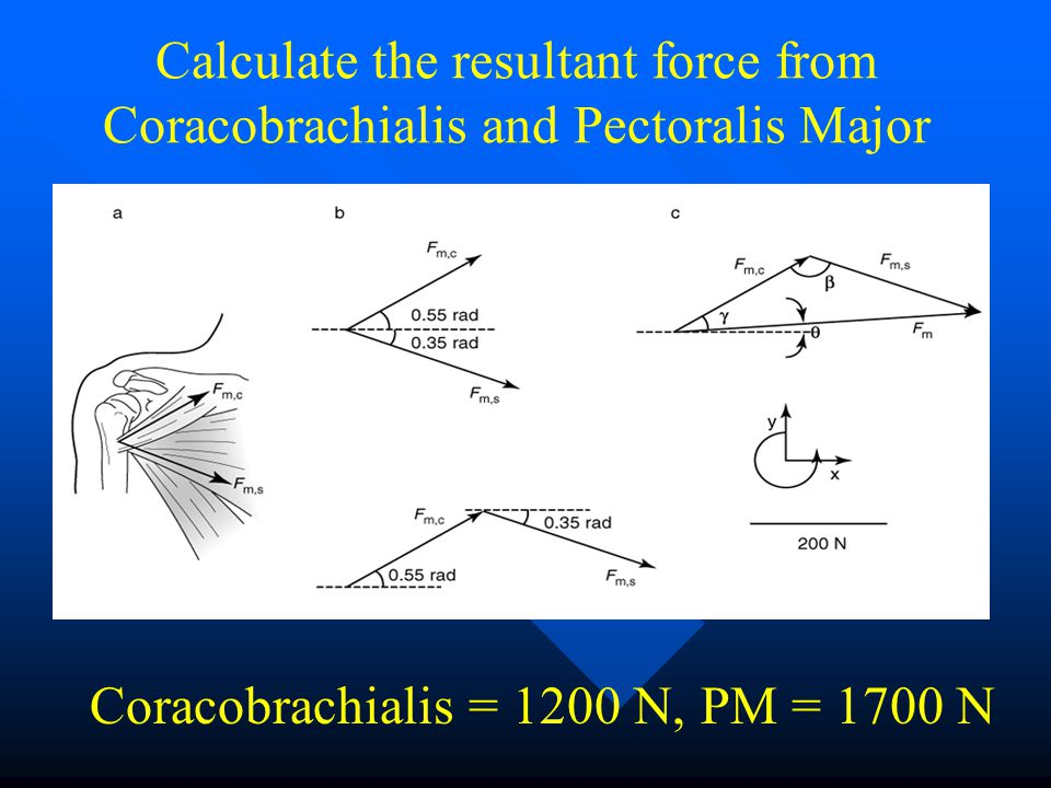Calculate the resultant force from Coracobrachialis and Pectoralis Major Coracobrachialis = 1200 N, PM = 1700 N