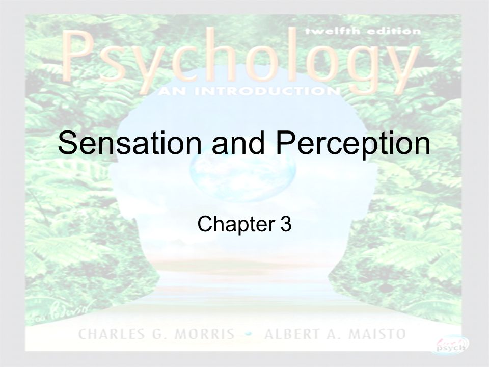 Psychology: An Introduction Charles A. Morris & Albert A. Maisto © 2005 Prentice Hall Sensation and Perception Chapter 3