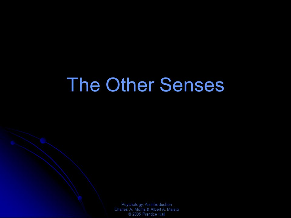 Psychology: An Introduction Charles A. Morris & Albert A. Maisto © 2005 Prentice Hall The Other Senses