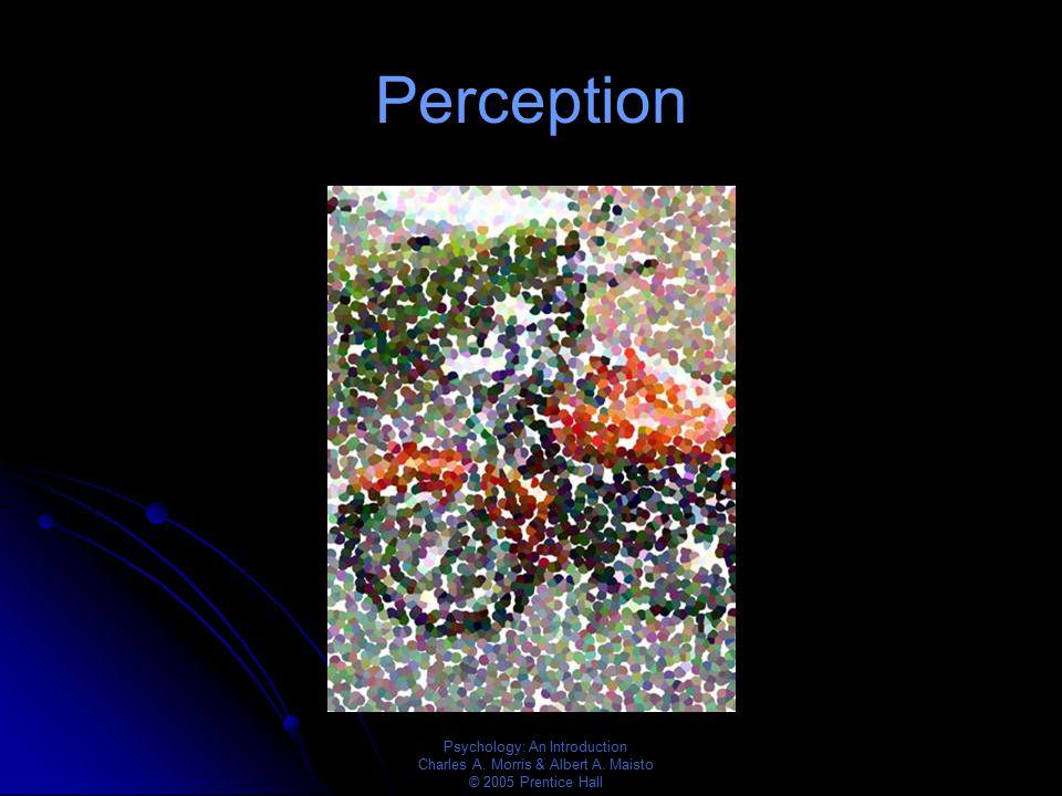 Psychology: An Introduction Charles A. Morris & Albert A. Maisto © 2005 Prentice Hall Perception