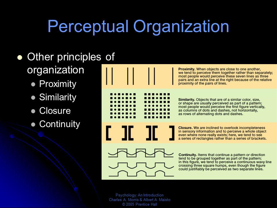 Psychology: An Introduction Charles A. Morris & Albert A. Maisto © 2005 Prentice Hall Perceptual Organization Other principles of organization Proximi