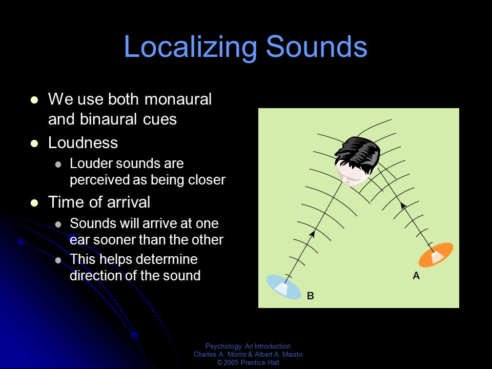 Psychology: An Introduction Charles A. Morris & Albert A. Maisto © 2005 Prentice Hall Localizing Sounds We use both monaural and binaural cues Loudnes