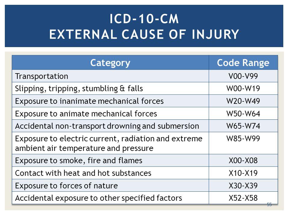 ICD-10-CM EXTERNAL CAUSE OF INJURY 55