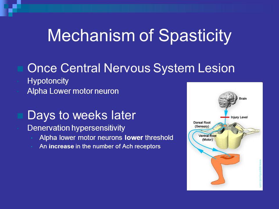 Electrical Stimulation [Chung, B., et al.