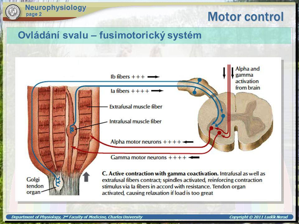 Department of Physiology, 2 nd Faculty of Medicine, Charles University Copyright © 2011 Luděk Nerad Motor control Neurophysiology page 2 Ovládání sval