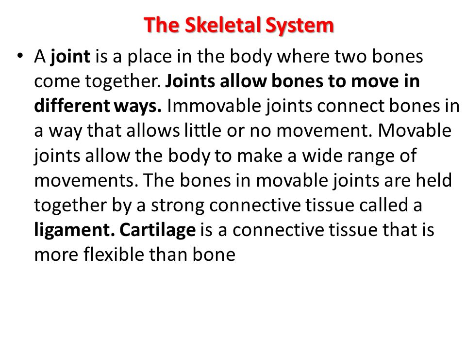 The Skeletal System A joint is a place in the body where two bones come together. Joints allow bones to move in different ways. Immovable joints conne