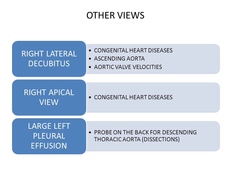 OTHER VIEWS CONGENITAL HEART DISEASES ASCENDING AORTA AORTIC VALVE VELOCITIES RIGHT LATERAL DECUBITUS CONGENITAL HEART DISEASES RIGHT APICAL VIEW PROB