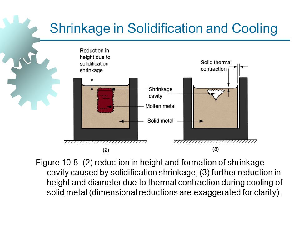 Shrinkage in Solidification and Cooling Figure 10.8 (2) reduction in height and formation of shrinkage cavity caused by solidification shrinkage; (3) further reduction in height and diameter due to thermal contraction during cooling of solid metal (dimensional reductions are exaggerated for clarity).