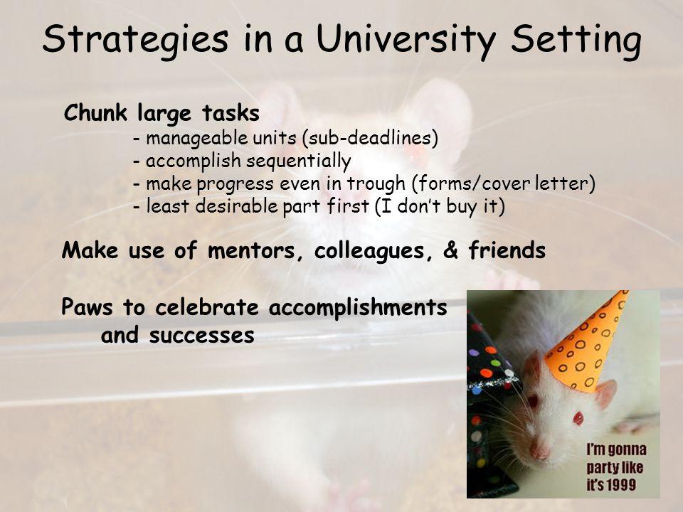 Strategies in a University Setting Work/Life balance