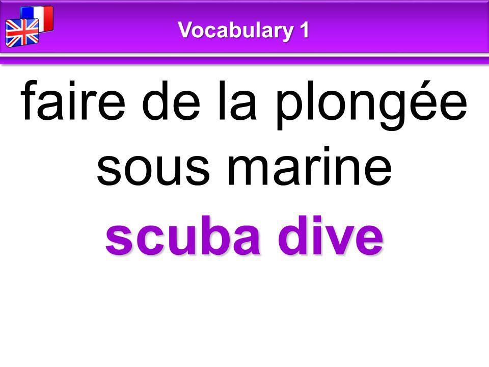 scuba dive faire de la plongée sous marine Vocabulary 1
