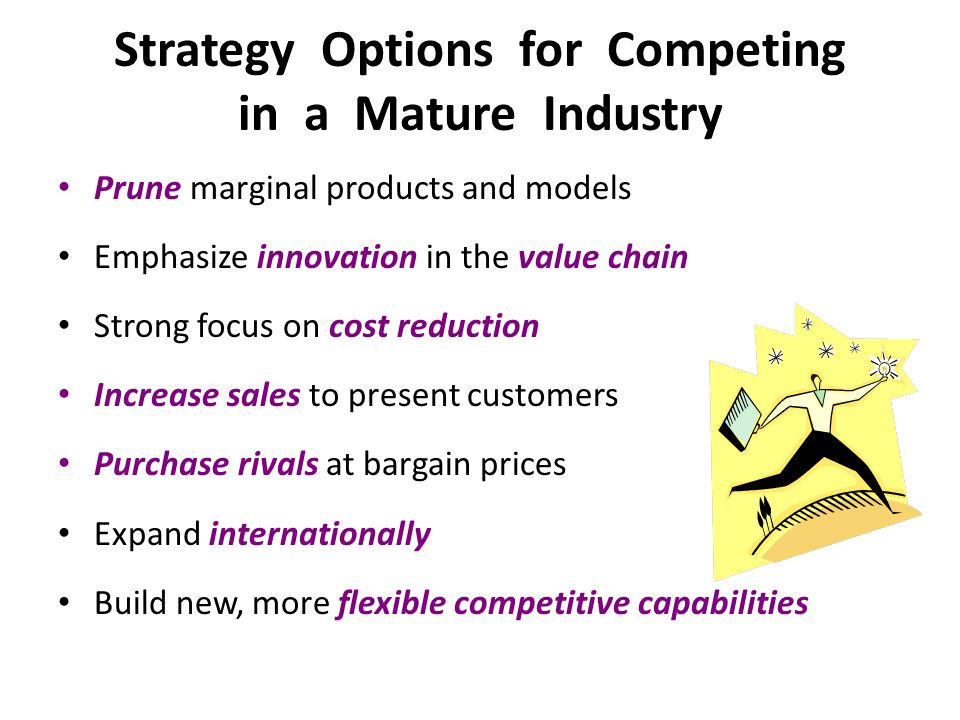 Strategy Options for Competing in a Mature Industry Prune marginal products and models Emphasize innovation in the value chain Strong focus on cost re