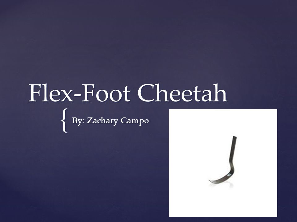 { Flex-Foot Cheetah By: Zachary Campo