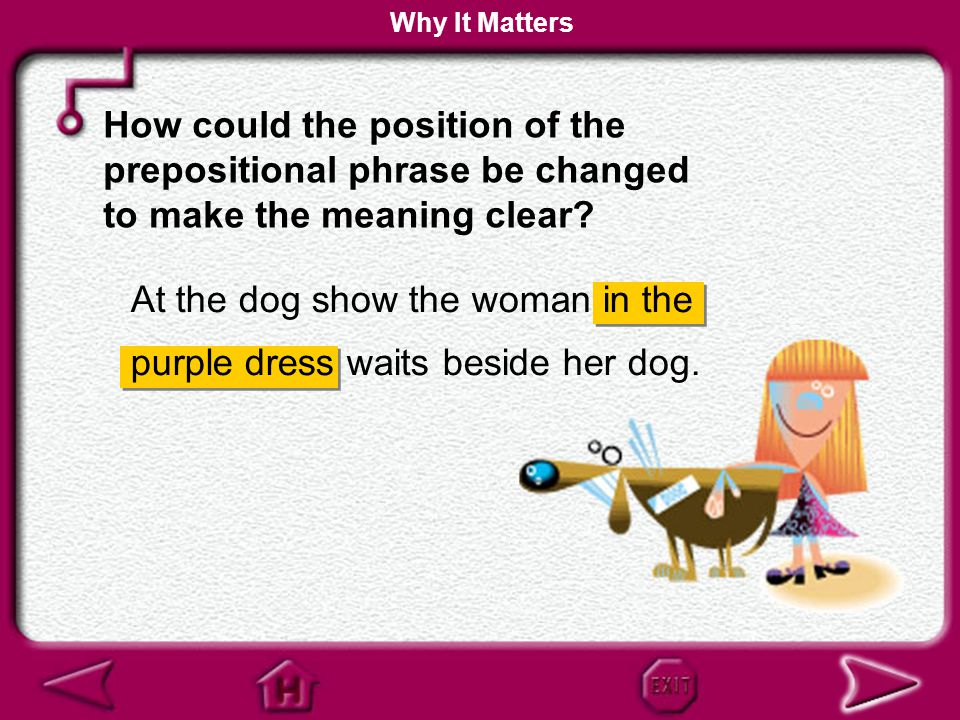 At the dog show the woman waits beside her dog in the purple dress. How does the placement of the highlighted prepositional phrase affect the meaning