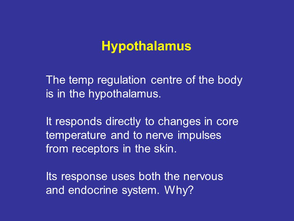 Hypothalamus The temp regulation centre of the body is in the hypothalamus. It responds directly to changes in core temperature and to nerve impulses
