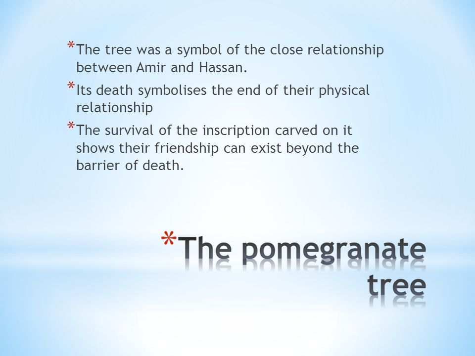 * The tree was a symbol of the close relationship between Amir and Hassan.