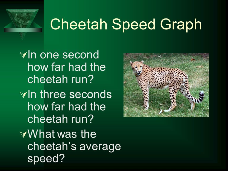 Speed  6. Graphs: –Time: x-axis –Distance: y-axis –Constant speed –Changing speed Copy samples of these into your notebook