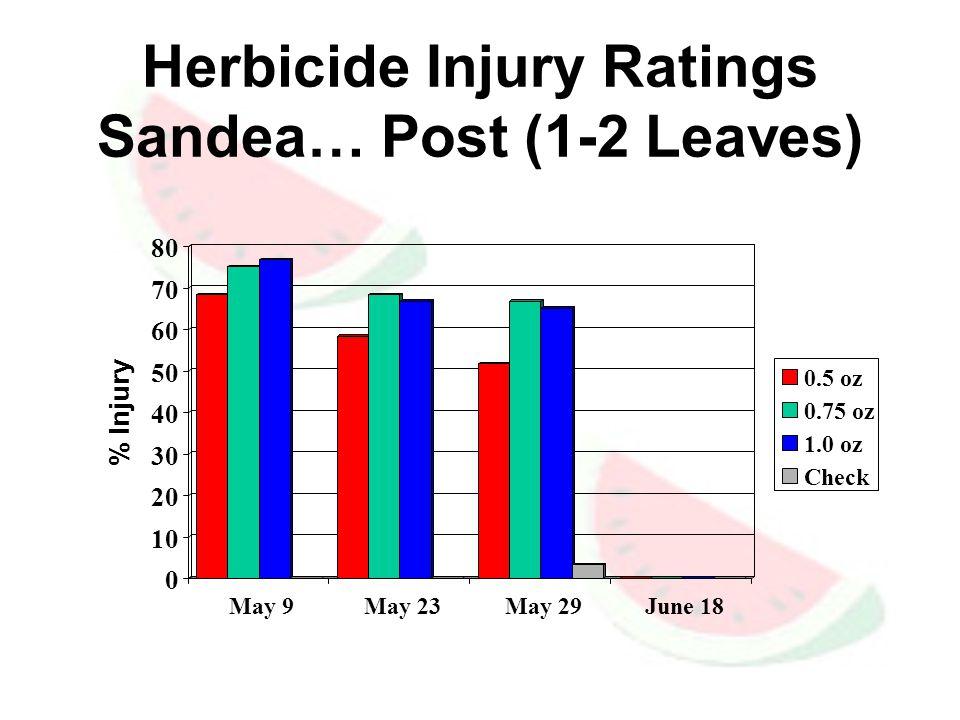 Herbicide Injury Ratings Sandea… Post (1-2 Leaves) 0 10 20 30 40 50 60 70 80 % Injury May 9 May 23 May 29 June 18 0.5 oz 0.75 oz 1.0 oz Check
