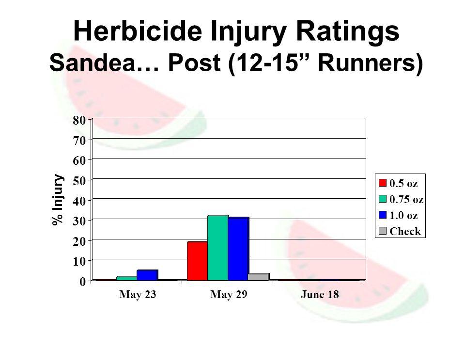 Herbicide Injury Ratings Sandea… Post (12-15 Runners) 0 10 20 30 40 50 60 70 80 % Injury May 23 May 29 June 18 0.5 oz 0.75 oz 1.0 oz Check