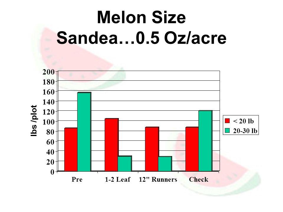 Melon Size Sandea…0.5 Oz/acre 0 20 40 60 80 100 120 140 160 180 200 lbs /plot Pre1-2 Leaf12 RunnersCheck < 20 lb 20-30 lb