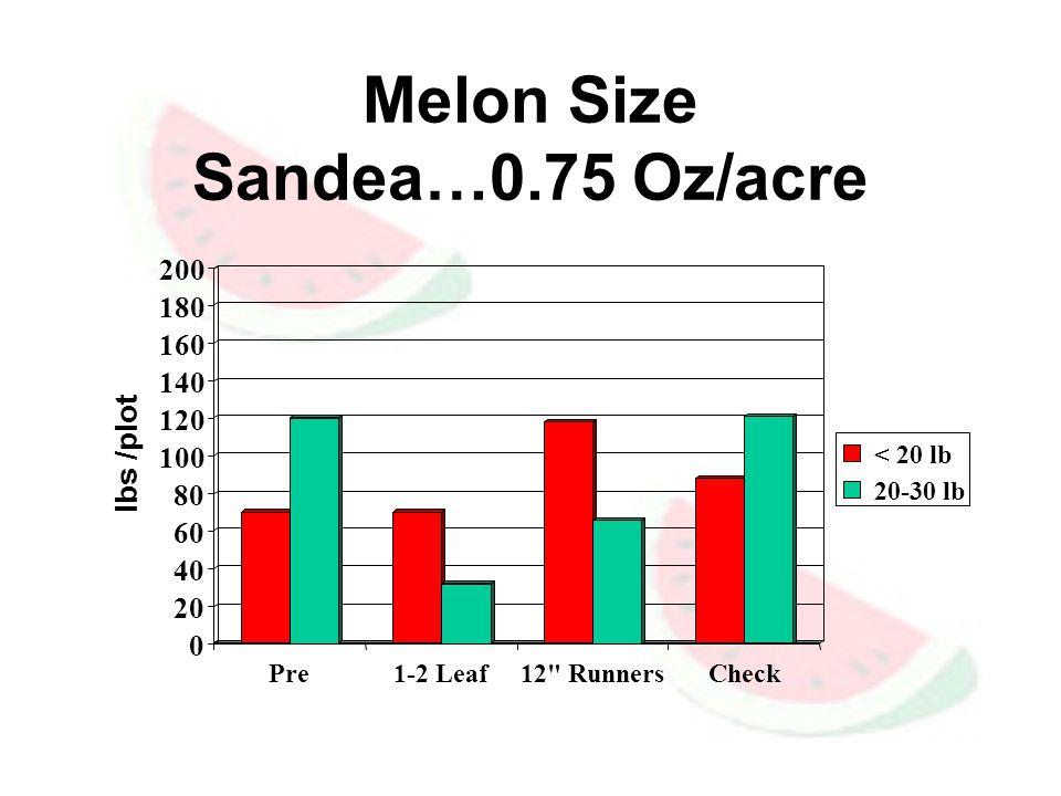 Melon Size Sandea…0.75 Oz/acre 0 20 40 60 80 100 120 140 160 180 200 lbs /plot Pre1-2 Leaf12 RunnersCheck < 20 lb 20-30 lb
